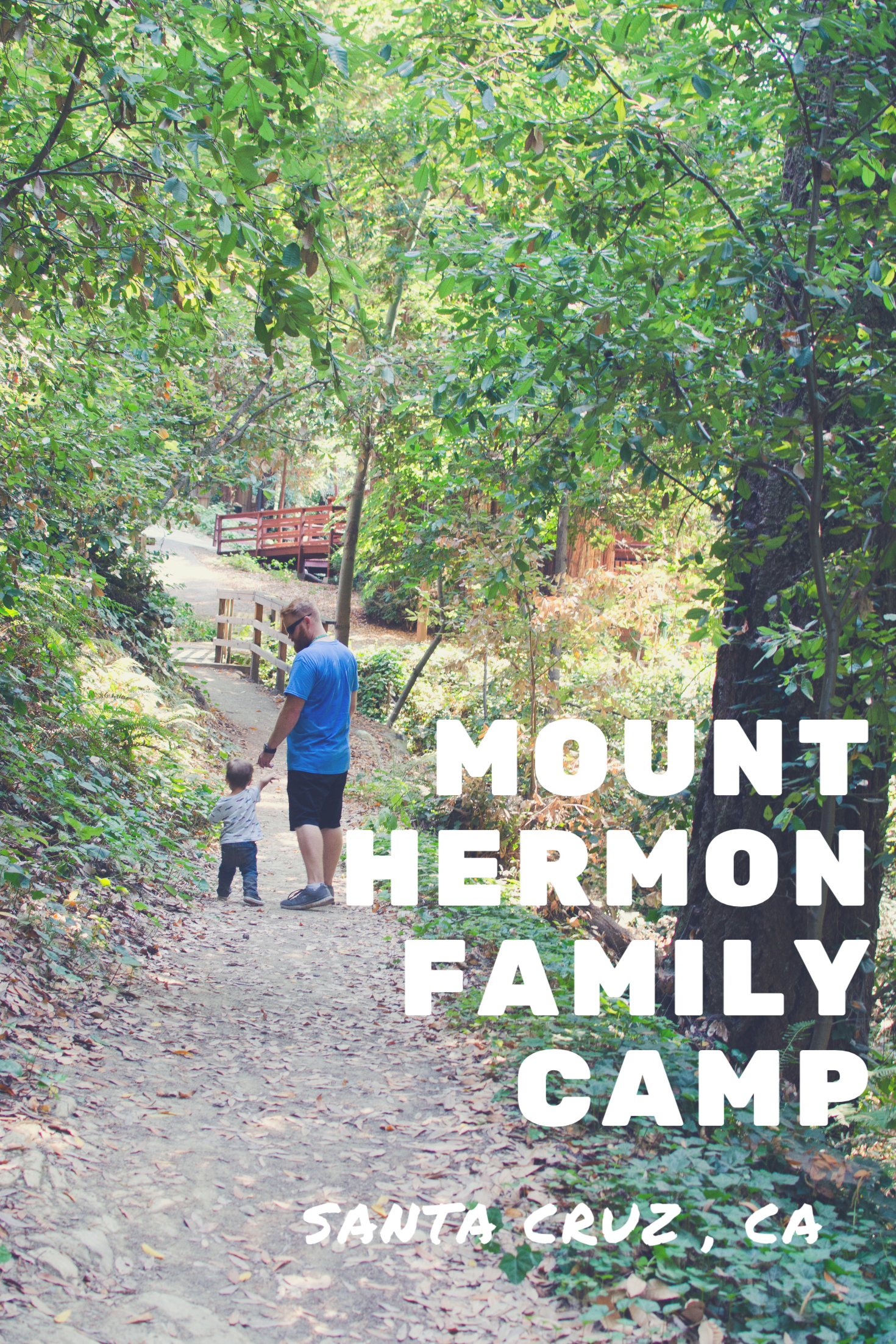 Mount Hermon Family Camp in Santa Cruz, CA